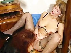 Cougar licking a hairy bush